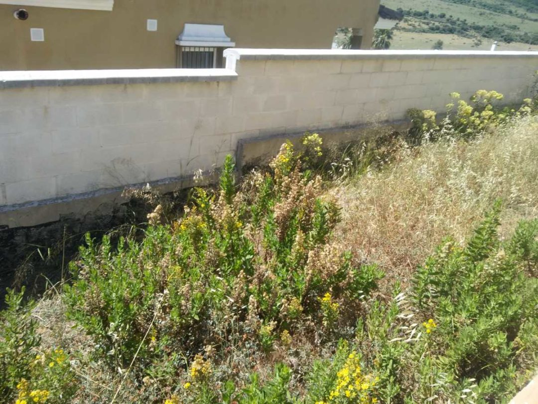 Assista -Vivienda en Algeciras Antes de obra 9